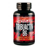 Трибулус Activlab Tribuactiv B6 (90 капс)