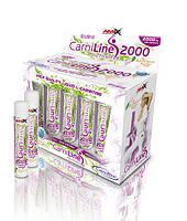 Жиросжигатель L-карнитин AMIX CarniLine Pro Fitness 2000 (10*25 мл)