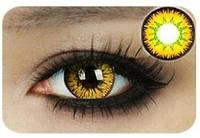 Цветные линзы для глаз, золотые + контейнер для линз в подарок