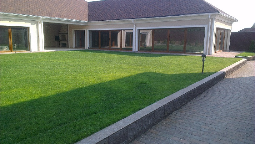 Рулонный газон с.Тарасівка
