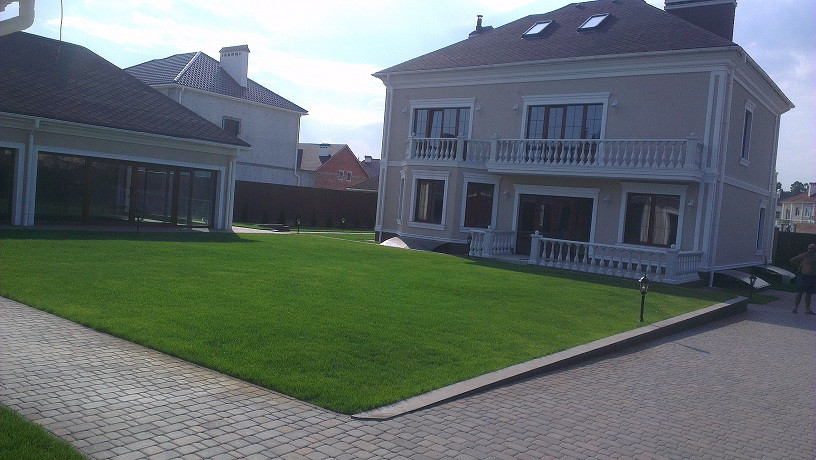 Рулонный газон с.Тарасівка 2