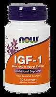 NOW IGF-1 (30 таб)