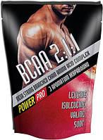 BCAA аминокислоты Power Pro BCAA 2:1:1 (500 г)