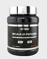 BCAA аминокислоты Premium Nutrition BCAA G Power (1 кг)