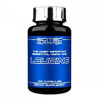 Аминокислота стимулирующая скелетный синтез белка мышц Scitec Nutrition Leucine (100 капс)
