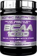 BCAA аминокислоты Scitec Nutrition BCAA 1000 (100 капс)