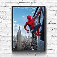 Постер с рамкой Spider-Man, Marvel #14