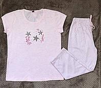 Комплект футболка і шорти жіночі . Розмір M .