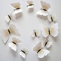 Объемные 3D бабочки. Набор 12 штук, кремовые. Декоративные наклейки на стену, холодильник, мебель, на магните