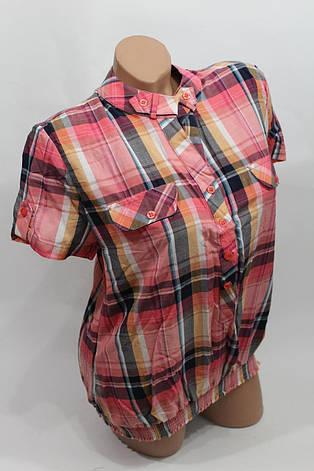 Женская рубашка в клетку с коротким рукавом B 5262 оптом в Хмельницком, фото 2