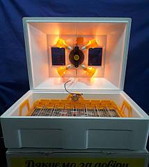 Инкубатор автоматический на72 яйца Теплуша люксУкраина