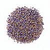 Сухоцвет цветков Лаванды-5 грамм