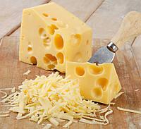 Закваска для сыра Маасдам на 10л