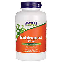 Препарат на основе эхинацеи NOW Foods Echinacea (400 мг) (250 капс)