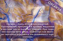 382725048_w640_h640_organzajpg.jpg