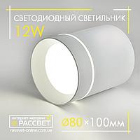 Светодиодный LED светильник Feron AL543 12W (CLN-133) 4000K 840Lm акцентный белый