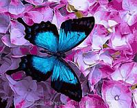 Картина по номерам Brushme 40х50 Бабочка на цветах (GX21627), фото 1