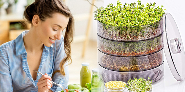 пророщенные зерна, семена и микрогрин || Metelka