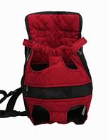 Рюкзак - кенгуру для собаки