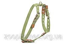 Шлея для средних собак Collar (Коллар) х/б тесьма А:47-72см, В:68-80см, 25мм