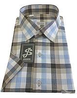 Мужская рубашка приталенная с коротким рукавом № 10-16 -  Napoli 5034/4, фото 1