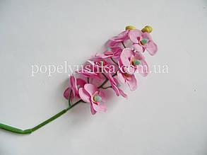 Гілка орхідеї рожева дрібна