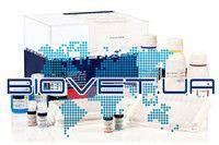 Ingezim BTV Compac. Тест-система для діагностики специфічних антитіл до вірусу блутанга методом ІФА