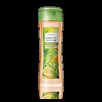 Шампунь-объем для тонких волос «Зеленый чай и бергамот» от Орифлейм