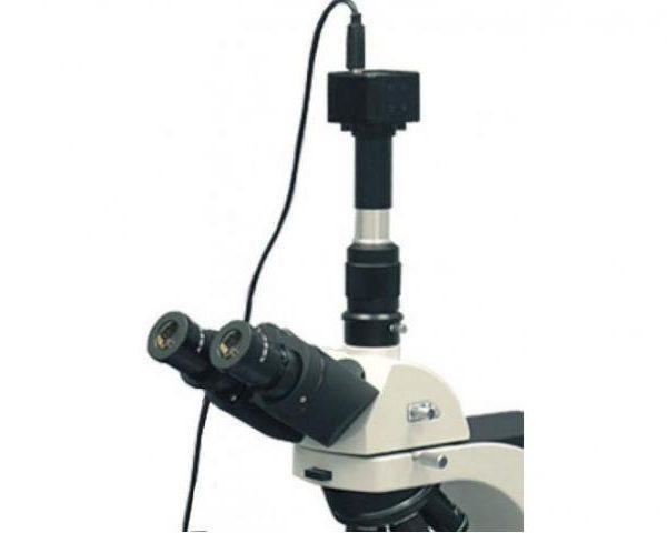 Цифровая камера CCD 5,0 Mpix от компании  MICROmed