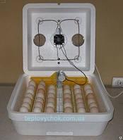Інкубатор з вентилятором і автоматичним переворотом Веселое семейство-2ВП