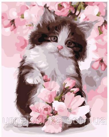Картина по номерам Котик в цветах яблони 40 х 50 см (BRM24603)