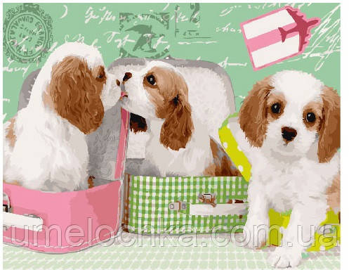 Картина по номерам Милые щеночки в чемоданах 40 х 50 см (BRM25358)