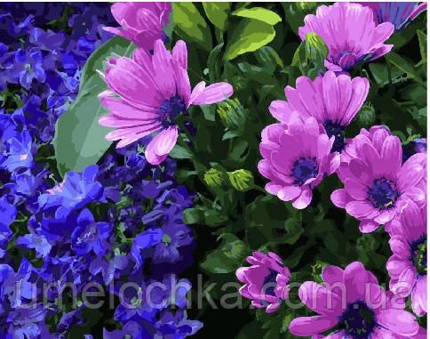 Картина по номерам Сиреневые хризантемы 40 х 50 см (BRM25350)