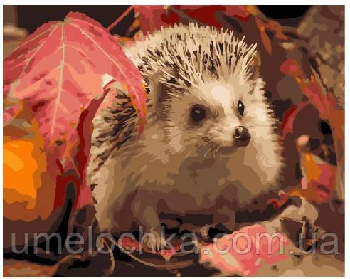 Картина по номерам Ёж в листьях 40 х 50 см (BRM25615)