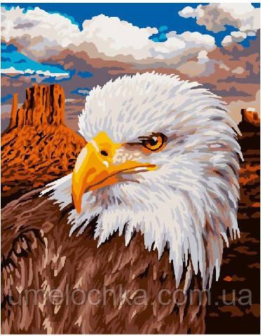 Картина по номерам Орел 40 х 50 см (BRM3928)