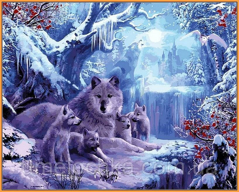 Картина по номерам Волчья зима (в раме) 40 х 50 см (NB1101R)