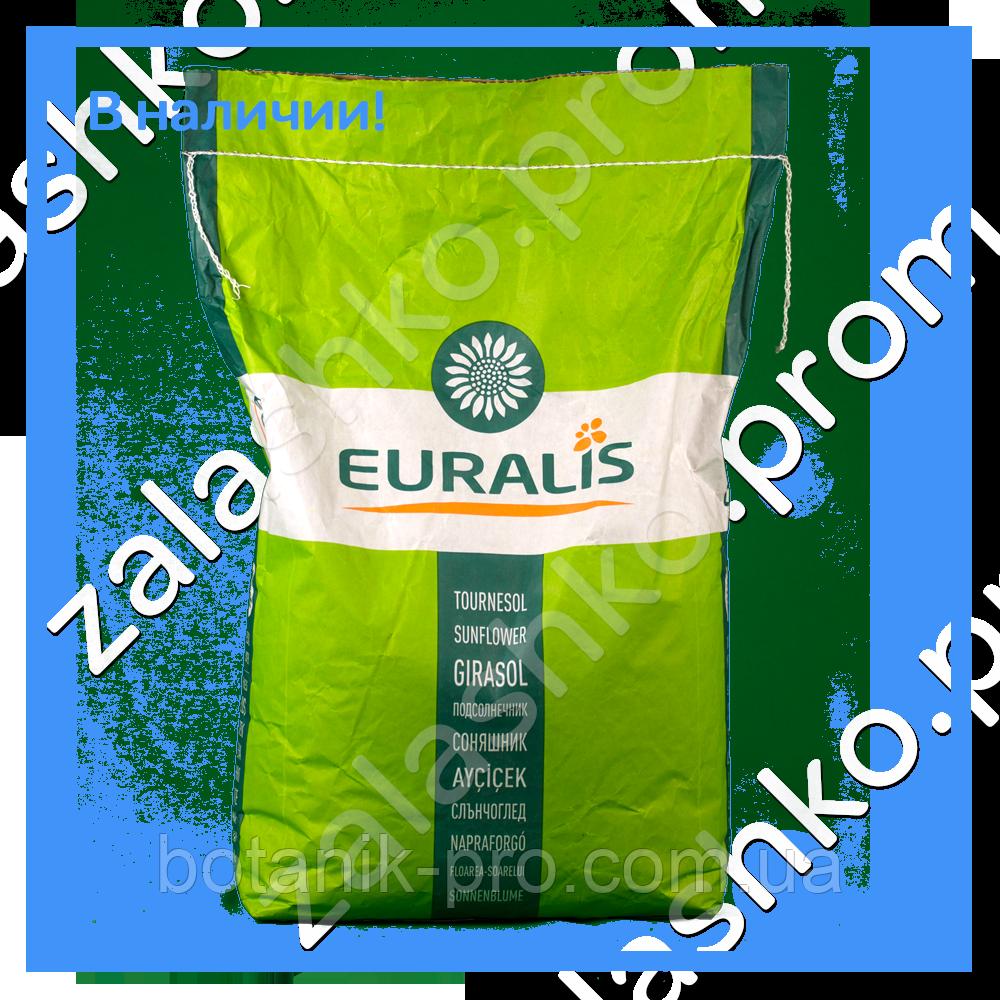 Семена подсолнечника Euralis ЕС Тундра