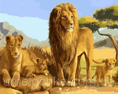 Картина по номерам Львиное семейство 40 х 50 см (BRM8791)