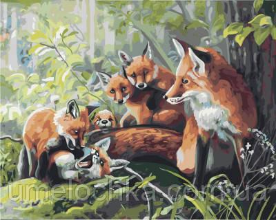 Картина по номерам Семья лисичек 40 х 50 см (BRM21596)