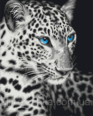 Картина по номерам Голубоглазый барс 40 х 50 см (BRM22284)