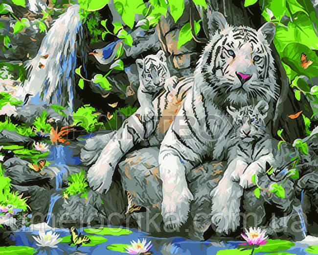 Картина по номерам Белые тигры 40 х 50 см (BRM23058)