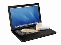 Ремонт залитого ноутбука, фото 1