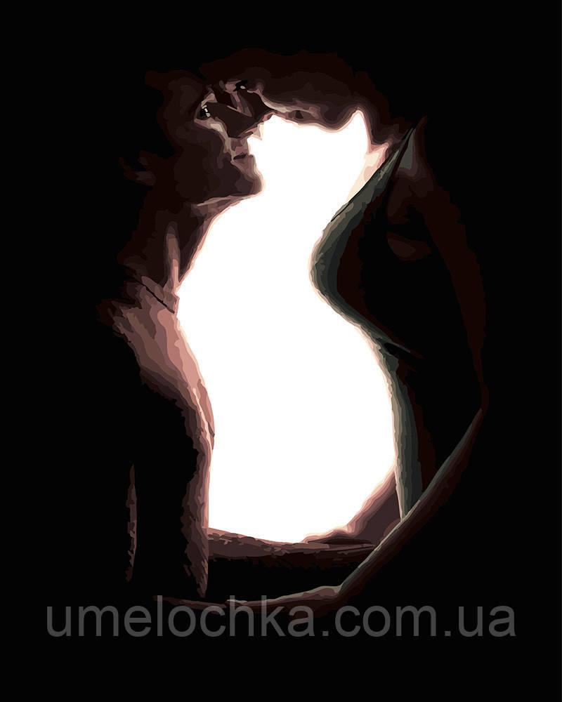 Картина по номерам Домашние любимцы Кошка 40 х 50 см (BRM24725)