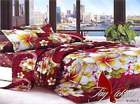 Комплект постельного белья Полиэстер ТМ  TAG 2-х спальный  B262-1