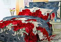 Комплект постельного  2 спального белья с 3д эффектом   BR3296 TAG