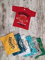"""Футболка детская """"Seabrook"""" для мальчиков. 4-5-6-7-8 лет (104-110-116-122-128 см). Один цвет в упаковке.Оптом"""