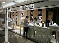 Светильник для подсветки витрин  LED TLS -3*1W 220V  4500К  серебро  200mm, фото 3