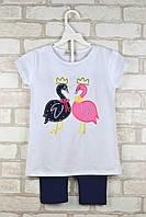 Комплект (футболка+капри) для девочки Лебеди белый возраст 4-5 лет 104/110 см