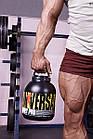 Протеин Ultra Whey Pro (2,27 кг) Universal Nutrition, фото 2
