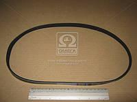 ⭐⭐⭐⭐⭐ Ремень поликлиновый 4PK950 (производство  DONGIL)  4PK950